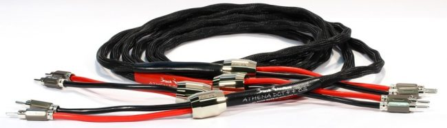 Black Rhodium Athena DCT++ Speaker Cables